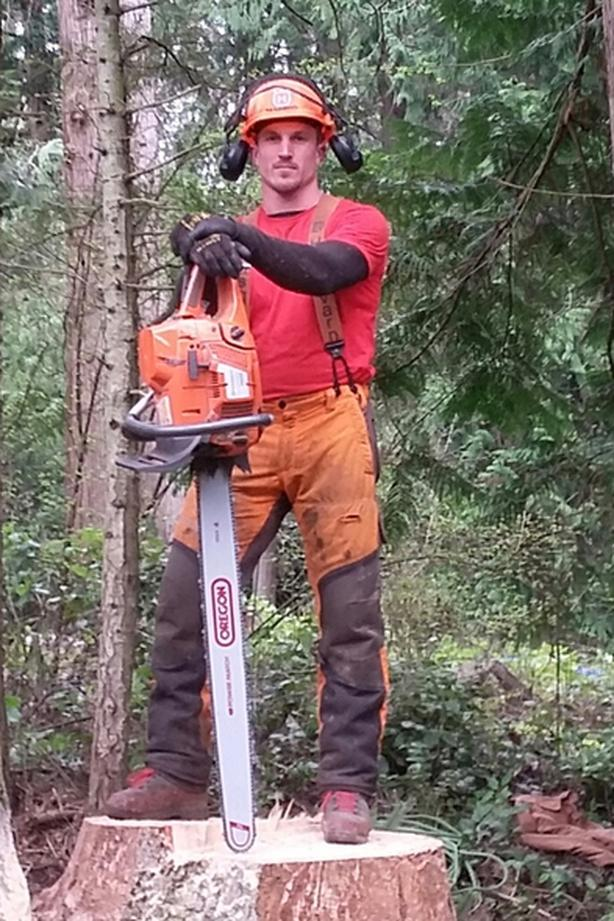 landscape maintenance and tree work