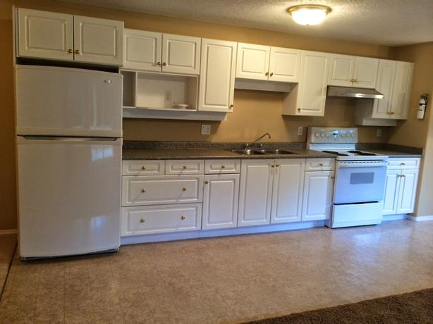 Share bright 2-bedroom suite in Royal Oak Area, Move in Ready