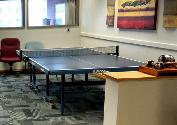 Professional Grade Beautiful Ping-Pong table set