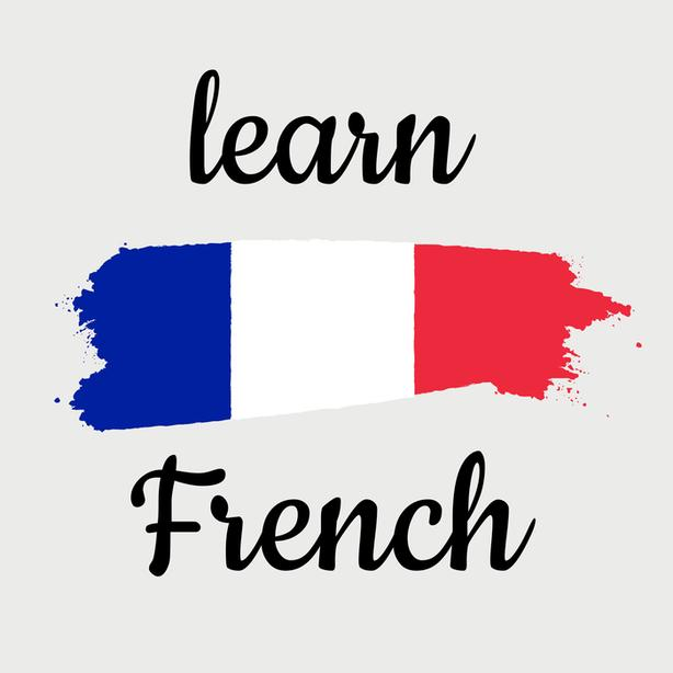 Online French Courses with real Natives from France.