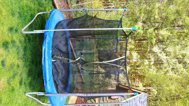8' Trampoline With Safety Net
