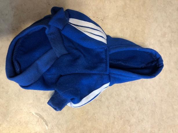 XS dog hoodie