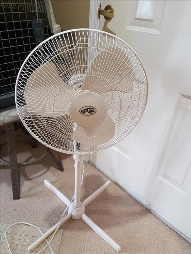 Tall Household Floor Fan - Oscillating