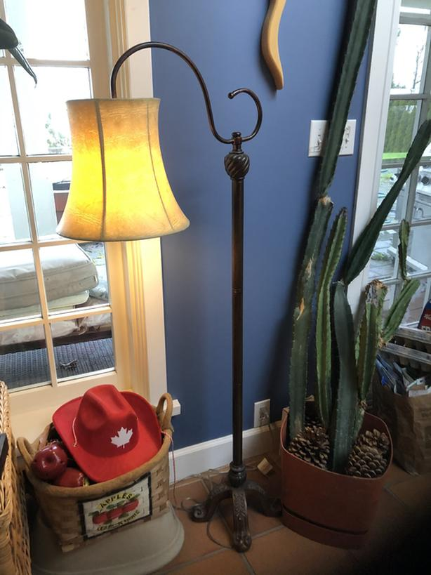 Bridge arm floor lamp w/ shade