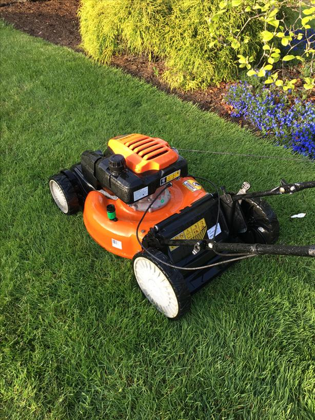 Lawn mowing - Starting at $30 - Parksville / Qualicum Beach