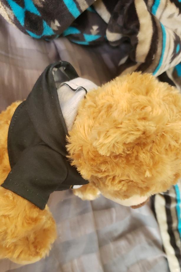 Green Bay (Green bay Packers Teddy bear)