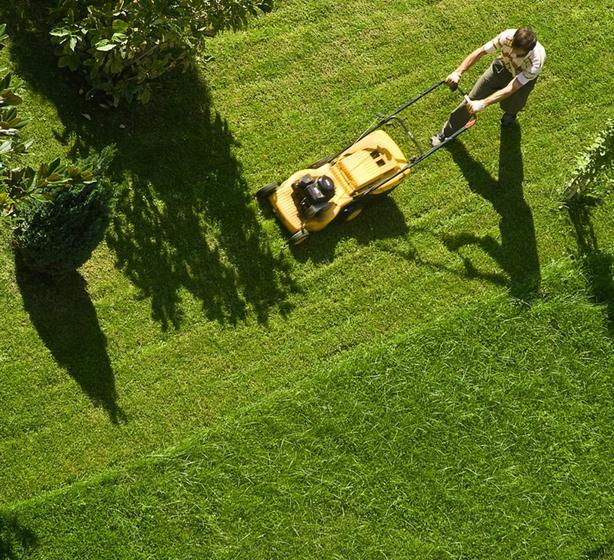 Bi-weekly lawn mowing