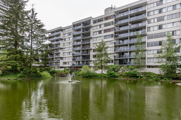 2BR/1BA Lougheed Apartment Unit, Close to Transit and SFU, Pet-Friendly