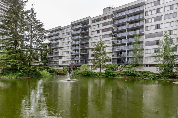 3BR/ 2BA Lougheed Apartment Near Skytrain and SFU, Pet-Friendly