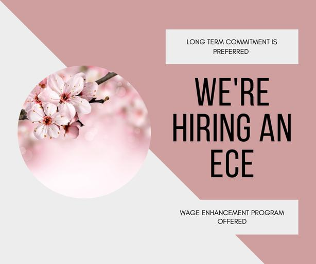 ECE / ECE Assistant - Part-time or Full-time