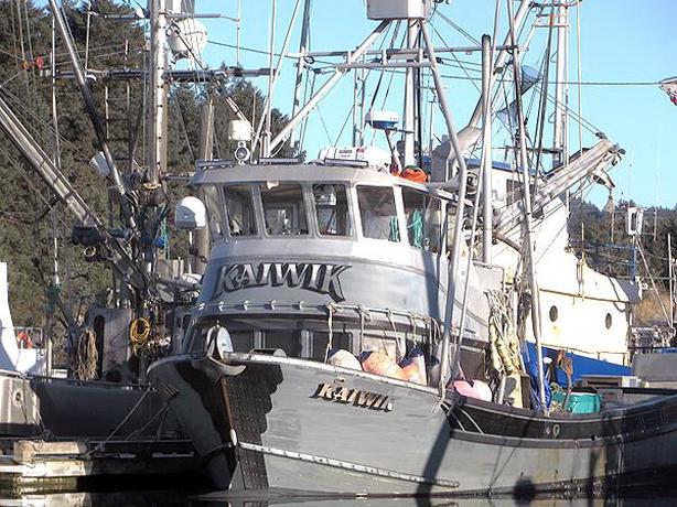 Delta / LeClercq Longliner, Jig Boat & Permit For Sale - Kaiwik