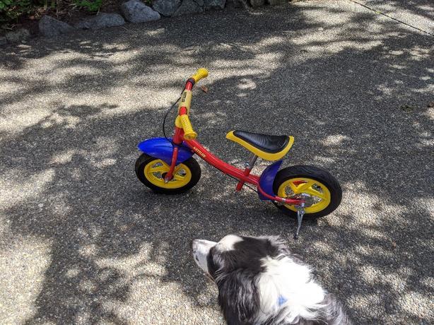 Kettler run bike