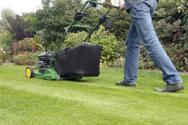 Discounted Landscaping and Garden Care