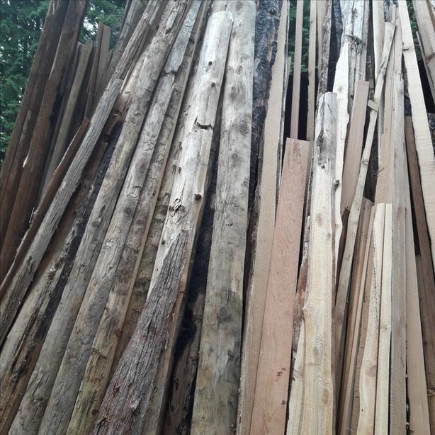 Cedar Slabs