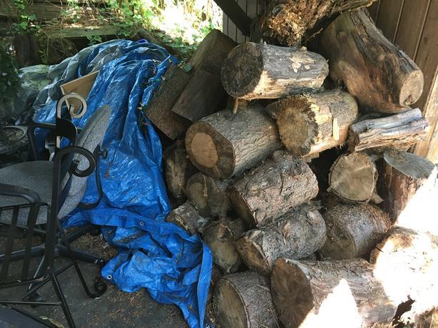 Well seasoned Arbutus firewood