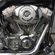 2004 Harley-Davidson® FXST