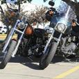 His and Her's Harley Set for Sale - Dyna's!