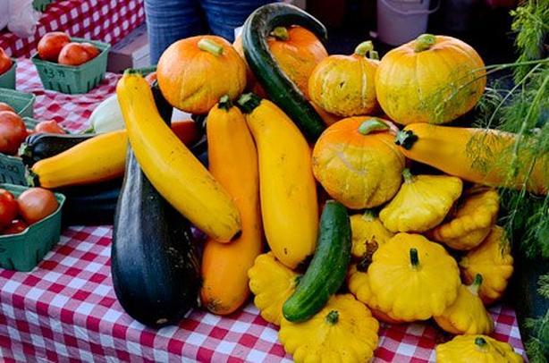 Seasonal Farm Workers Needed