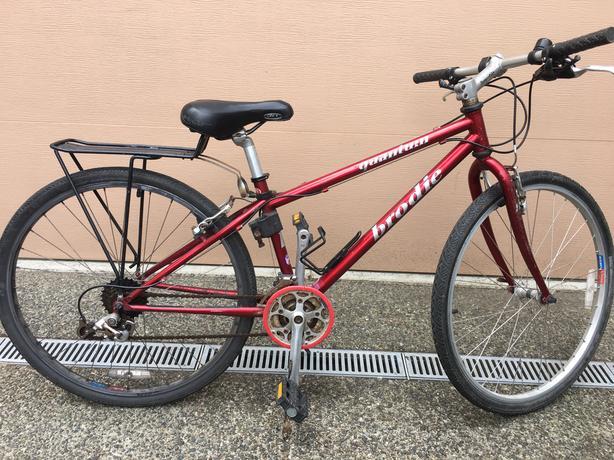 Brodie Quantum Mountain bike