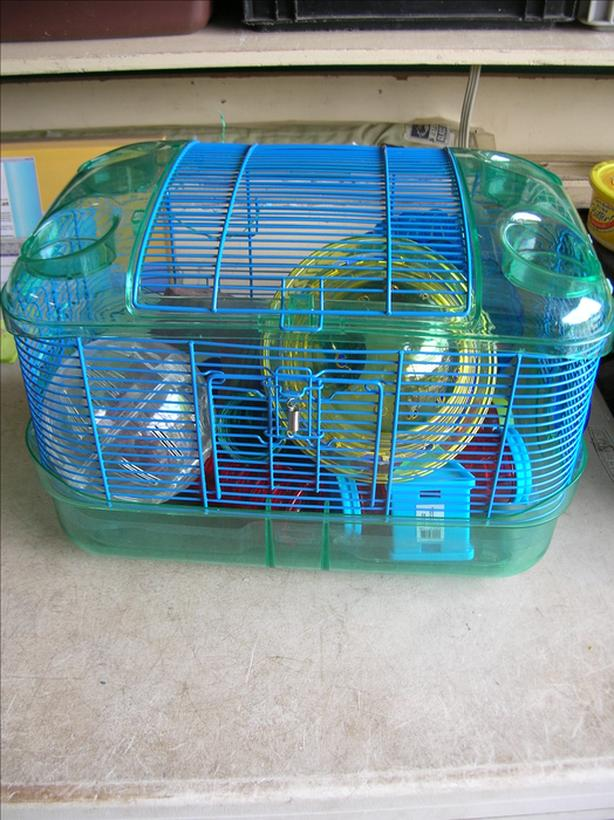 Crittertrail  Hamster and Gerbil Cages with Accessories.  (277 1813)   **
