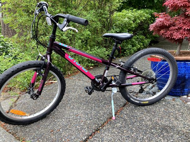 "Miele 20"" Girls 6 speed Kids Bike"