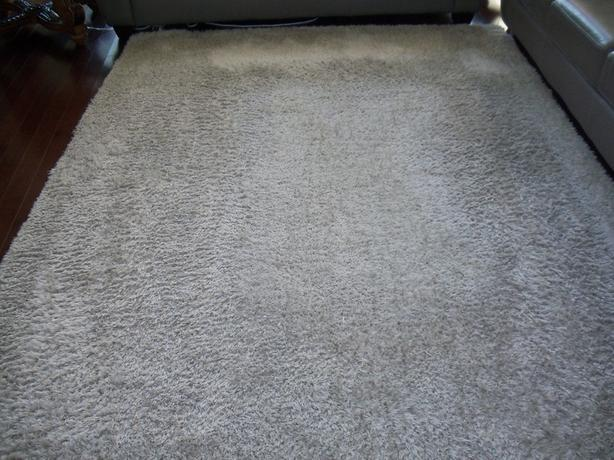 ART DECO SHAG CARPET 9'x 61/2'