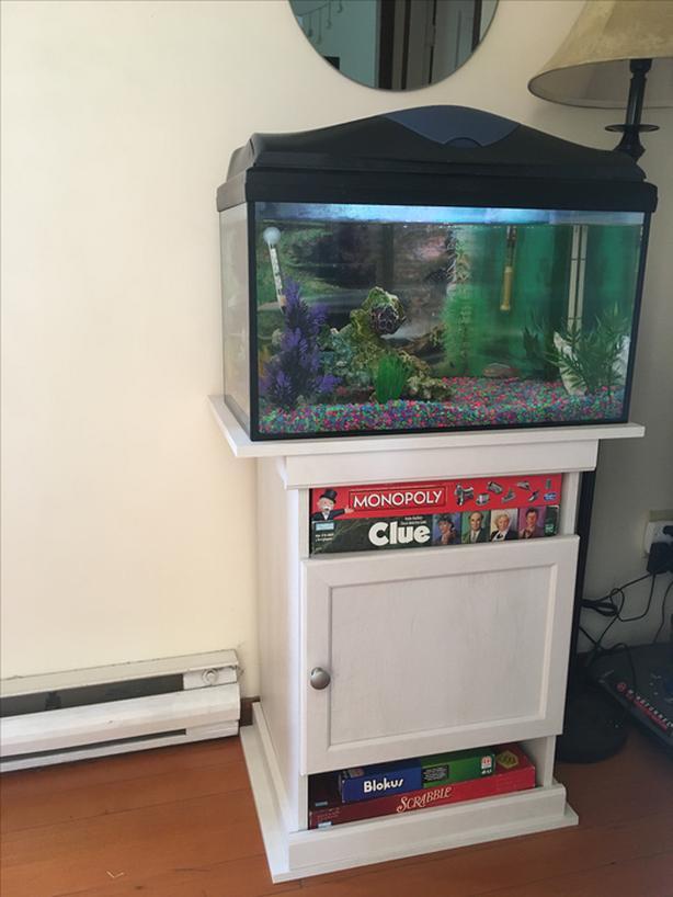 15-gallon Aquarium & 9 fish