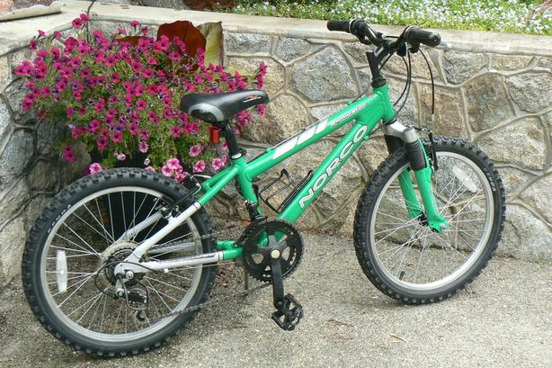 """Norco Eliminator children's all purpose mountain bike with 20"""" tires"""
