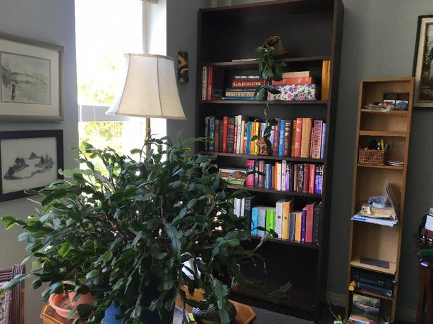 tall dark brown solid wood bookcase
