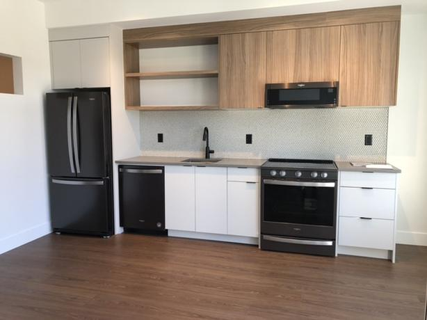 Brand New One-Bedroom in Ironworks & $500 Cash Bonus (515 Chatham)