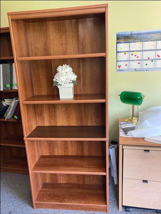 Office Bookshelf/Bookcase *Bought for $250*