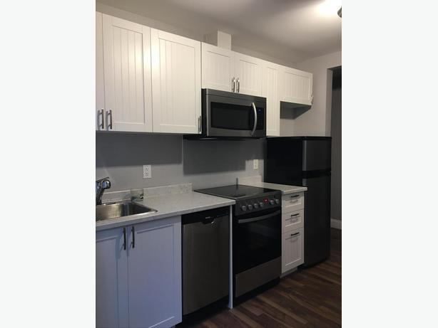 1 Bedroom Suite Bottom of Bear Mountain Available Sept 1!