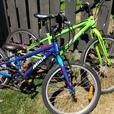 Miele Torino kids bikes