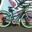 Norco Indie XXS