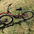 FREE: Garneau Trail-a-bike