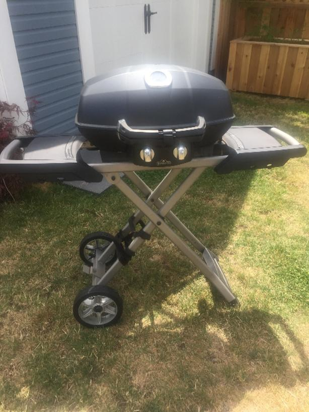 Napoleon 2-Burner Propane Gas and Charcoal Grill bbq
