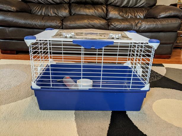 Collapsible guinea pig starter cage