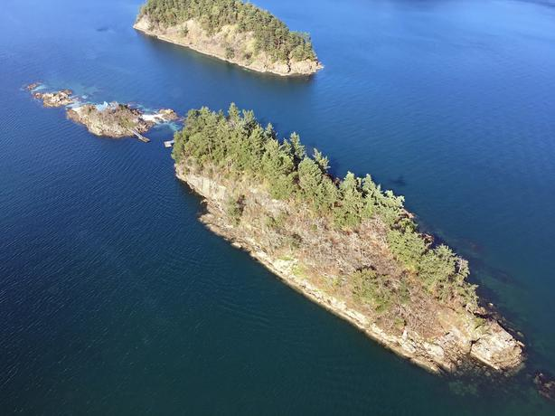 3+Acre Private Island with dock