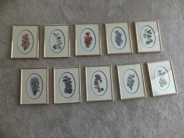PROVINCIAL FLOWERS set of 10 in 3 thread petit point. Professionally framed.