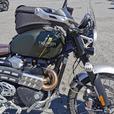 2019 Triumph 1200XC