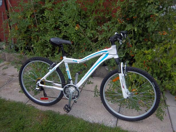Peak by Raleigh mountain bicycle