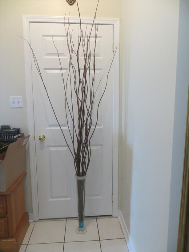 Wood Sticks and Glass Vase