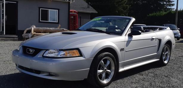 2000 Ford Mustang Convertible GT Black Creek Motors