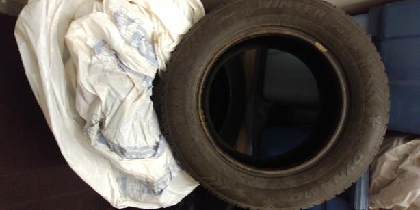 Winter Tires Dynamo DW701195/65R15