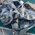Camping gear:  back packs, canoe trip packs, tent, stove.