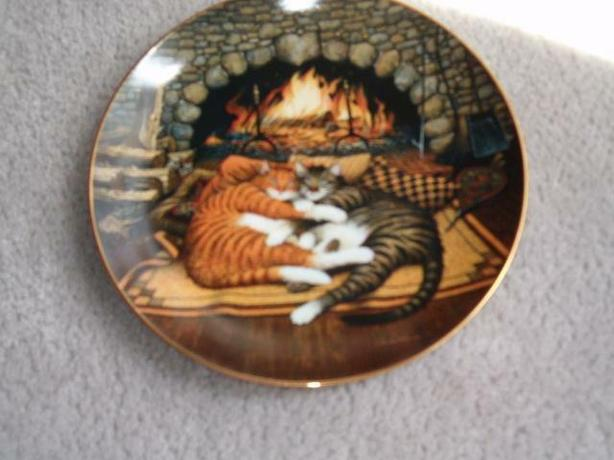 cat plate purr fact pairs