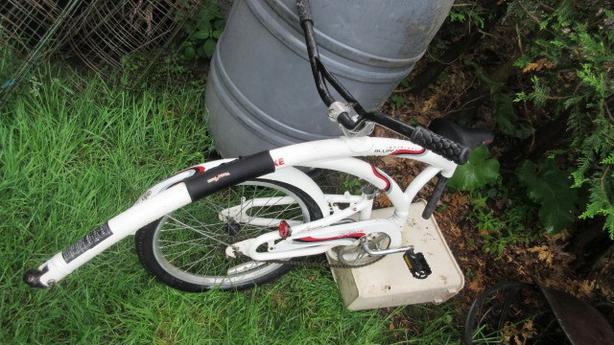 Adams Light foldable detachable bike trailer child tandem