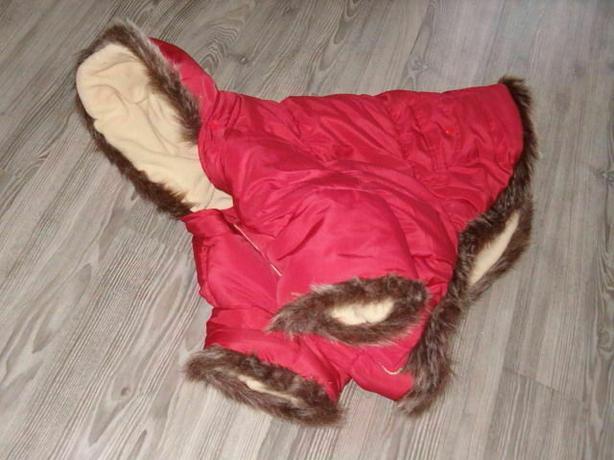 (dog winter jacket)