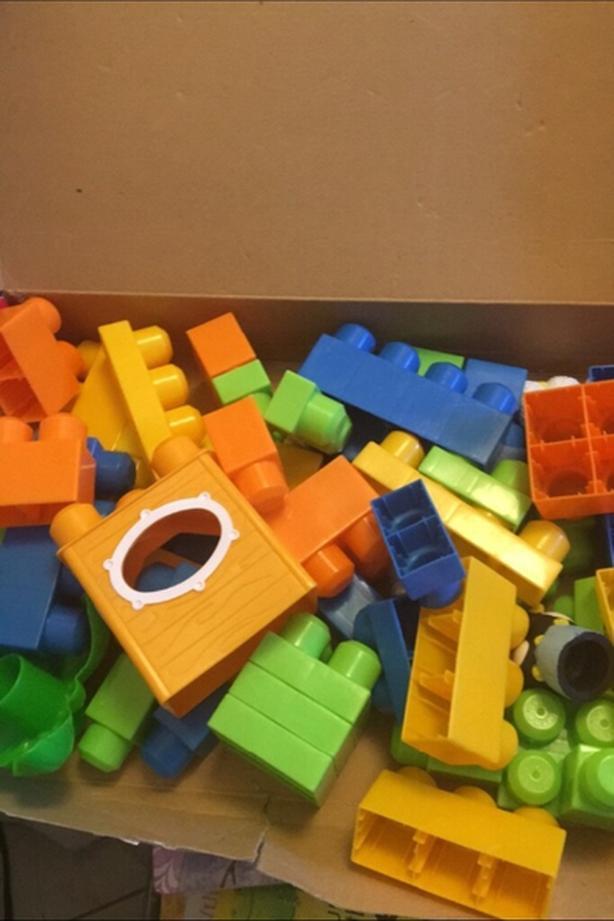 Mega Bloks Zoo