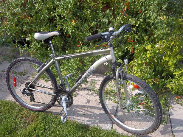 Premier by Infinity bicycle